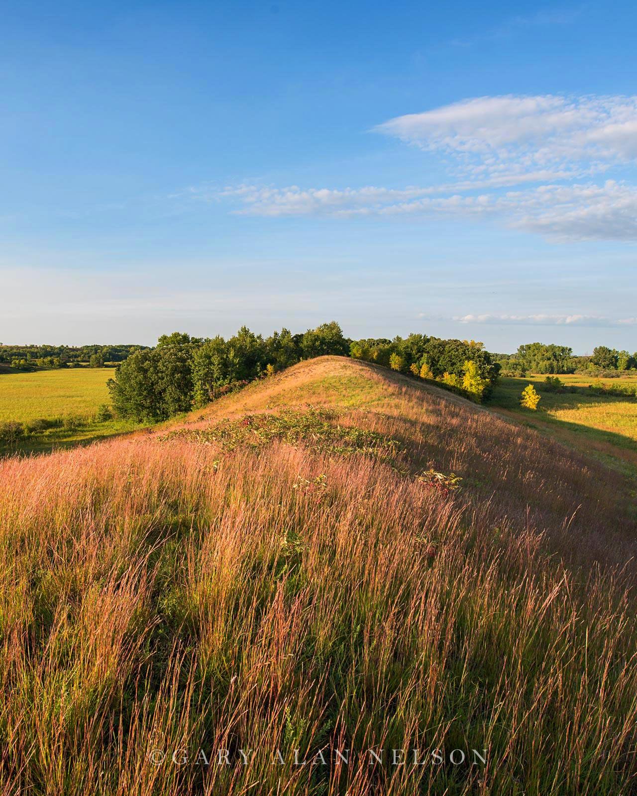 minnesota, prairie, esker, glacial, prairie grasses, photo