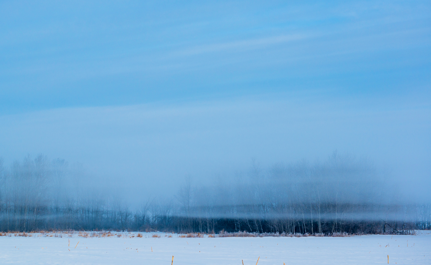 Floating fog over fresh snow and forest, Chisago County, Minnesota.