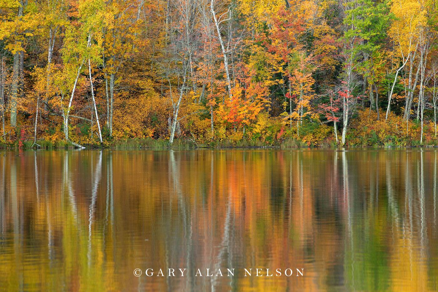 Autumn reflections on Loon Lake, Savannah Portage State Park, Minnesota