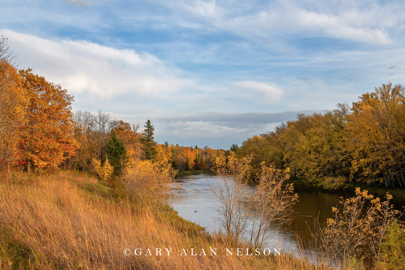 Autumn along the Mississippi River, Aitkin County, Minnesota