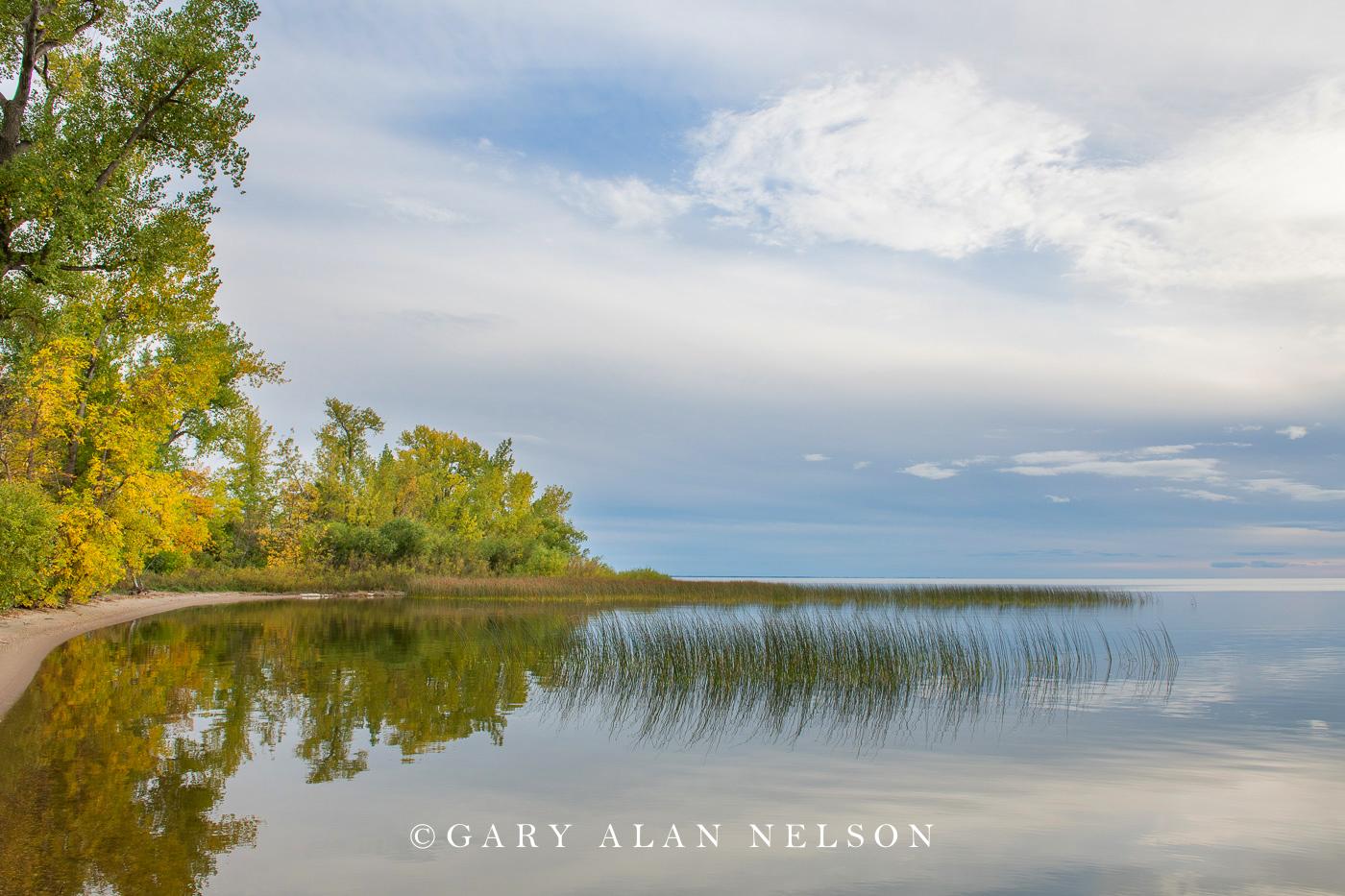 big bog, red lake, photo