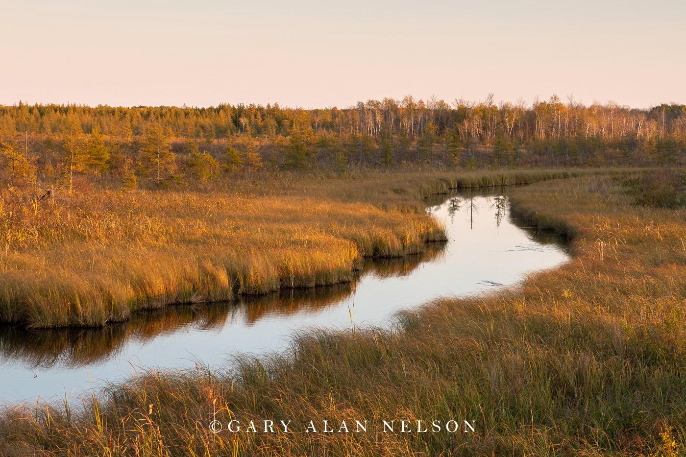 Rice River in autumn, Rice Lake National Wildlife Area, Minnesota