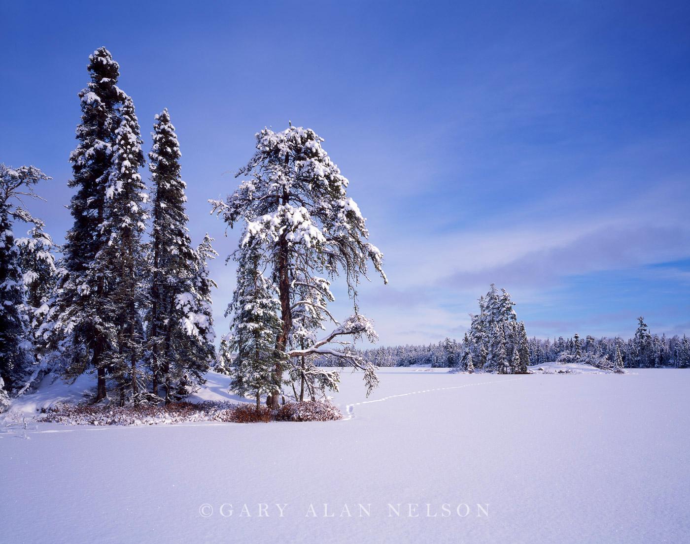 boundary waters,minnesota,winter, photo