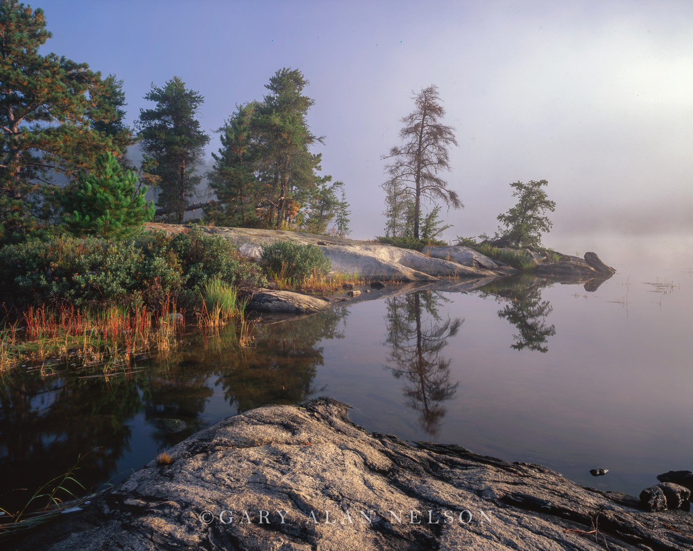 National Park,fog,minnesota,voyageurs, photo