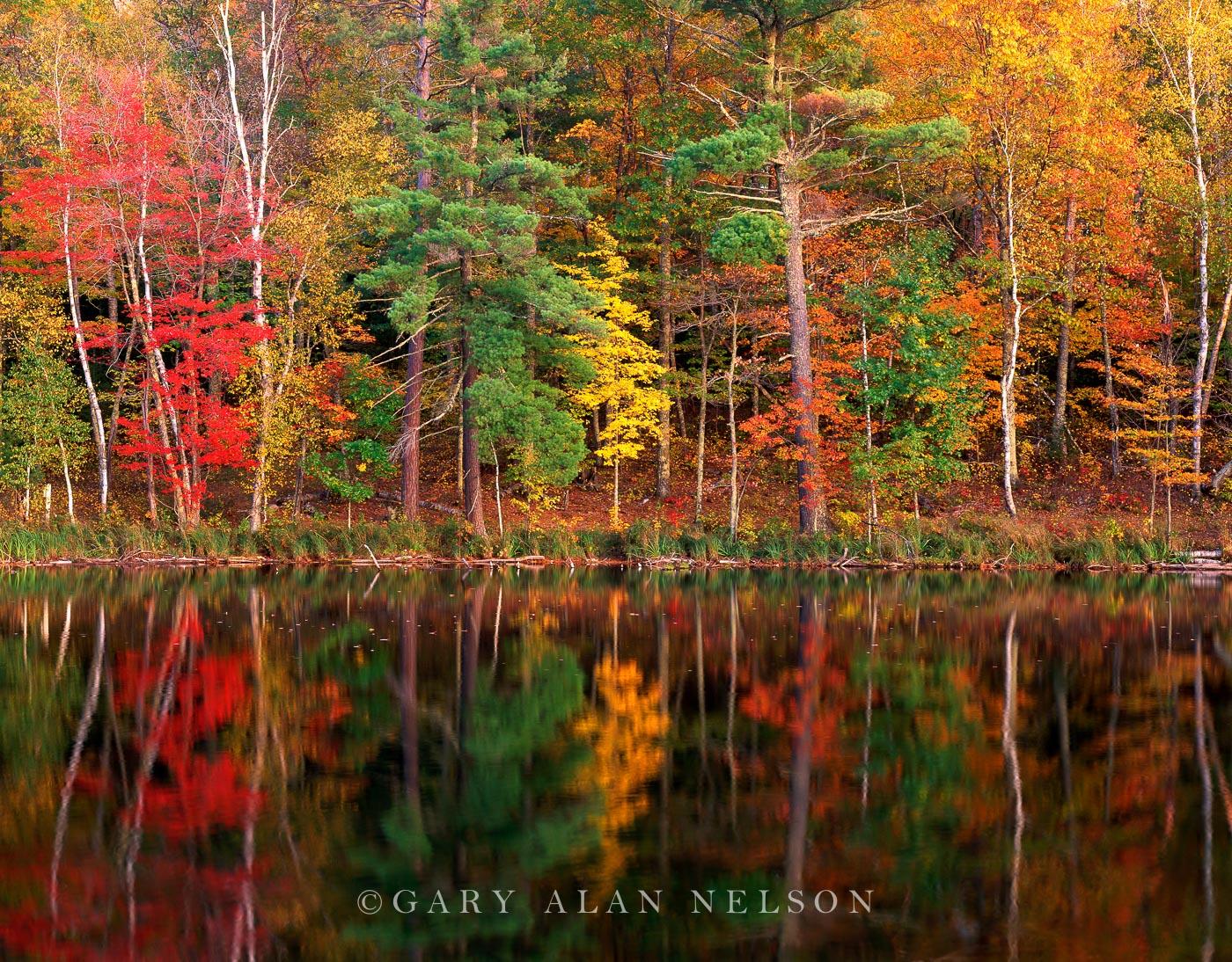 savannah portage state park, minnesota, autumn, reflections, photo