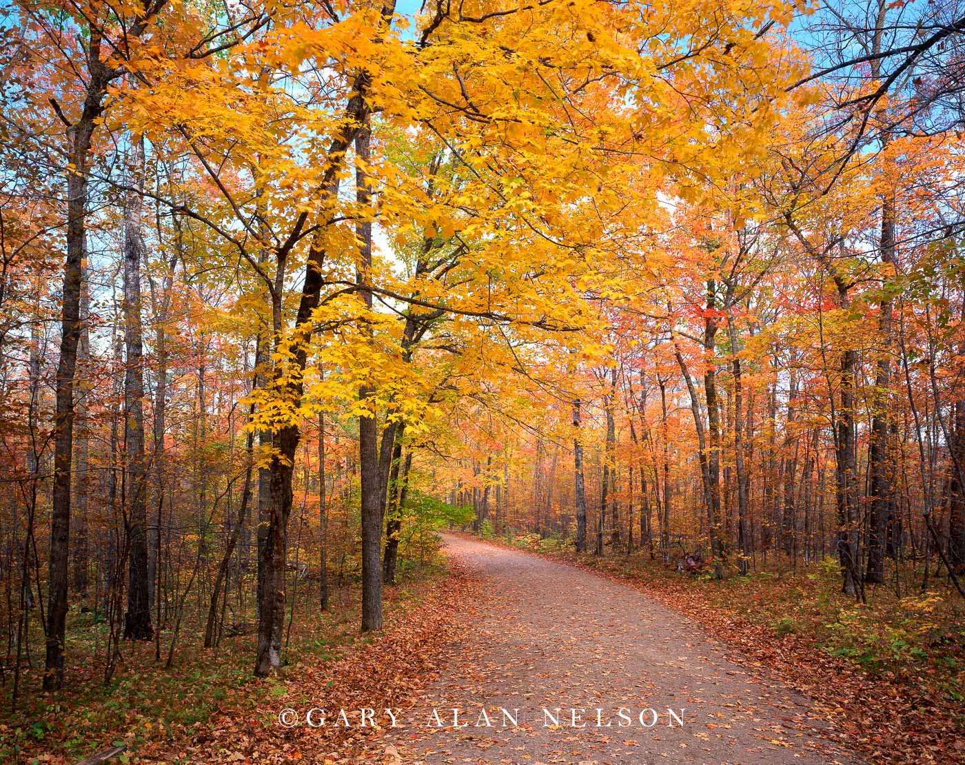 country road, autumn, minnesota, photo