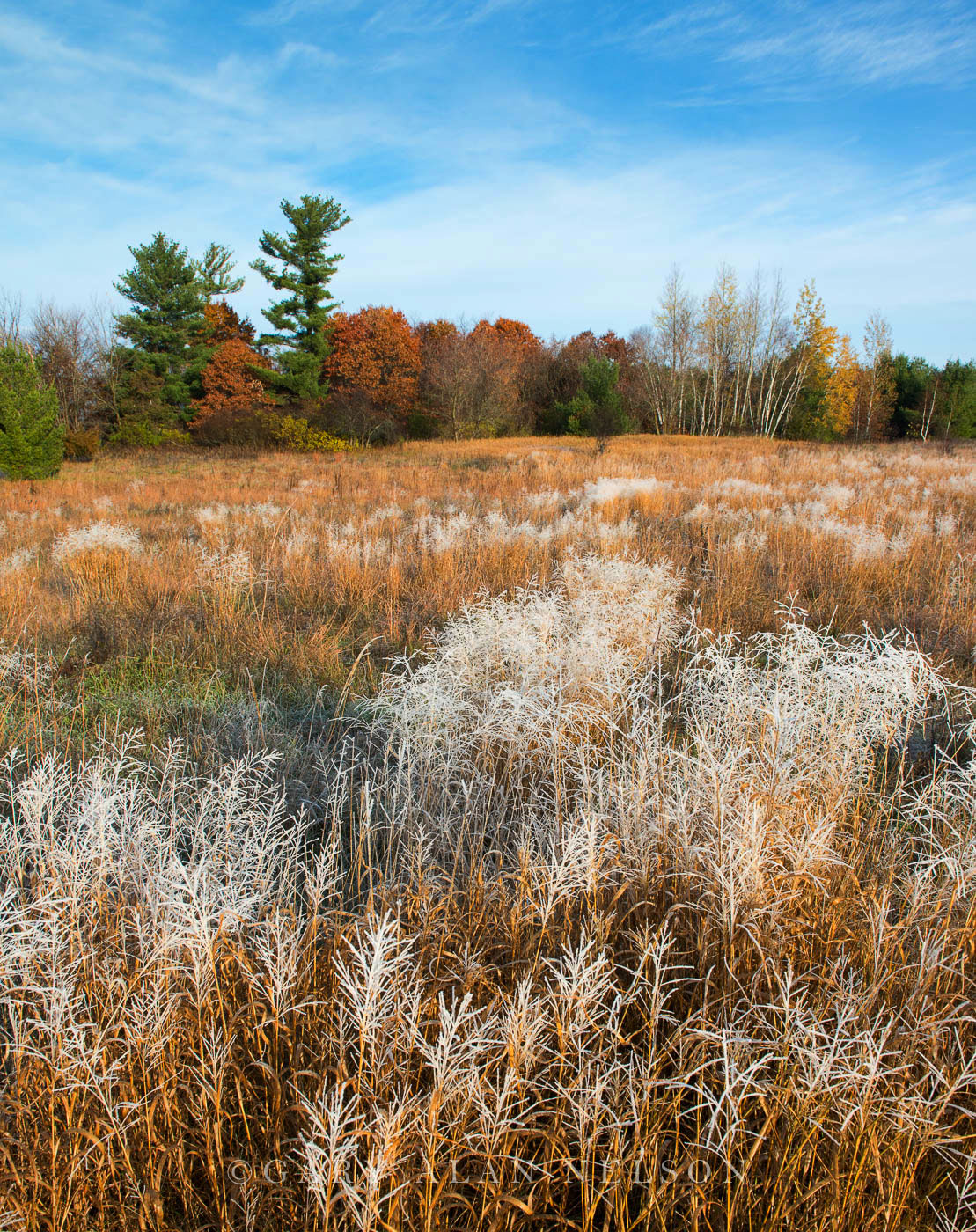 WMA,autumn,minnesota,wildlife management area, photo