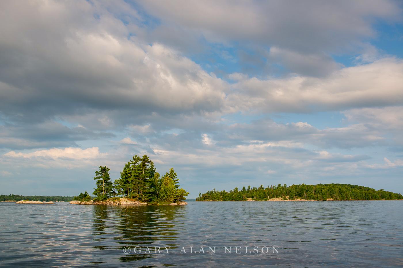 voyageurs national park, minnesota, pine, photo