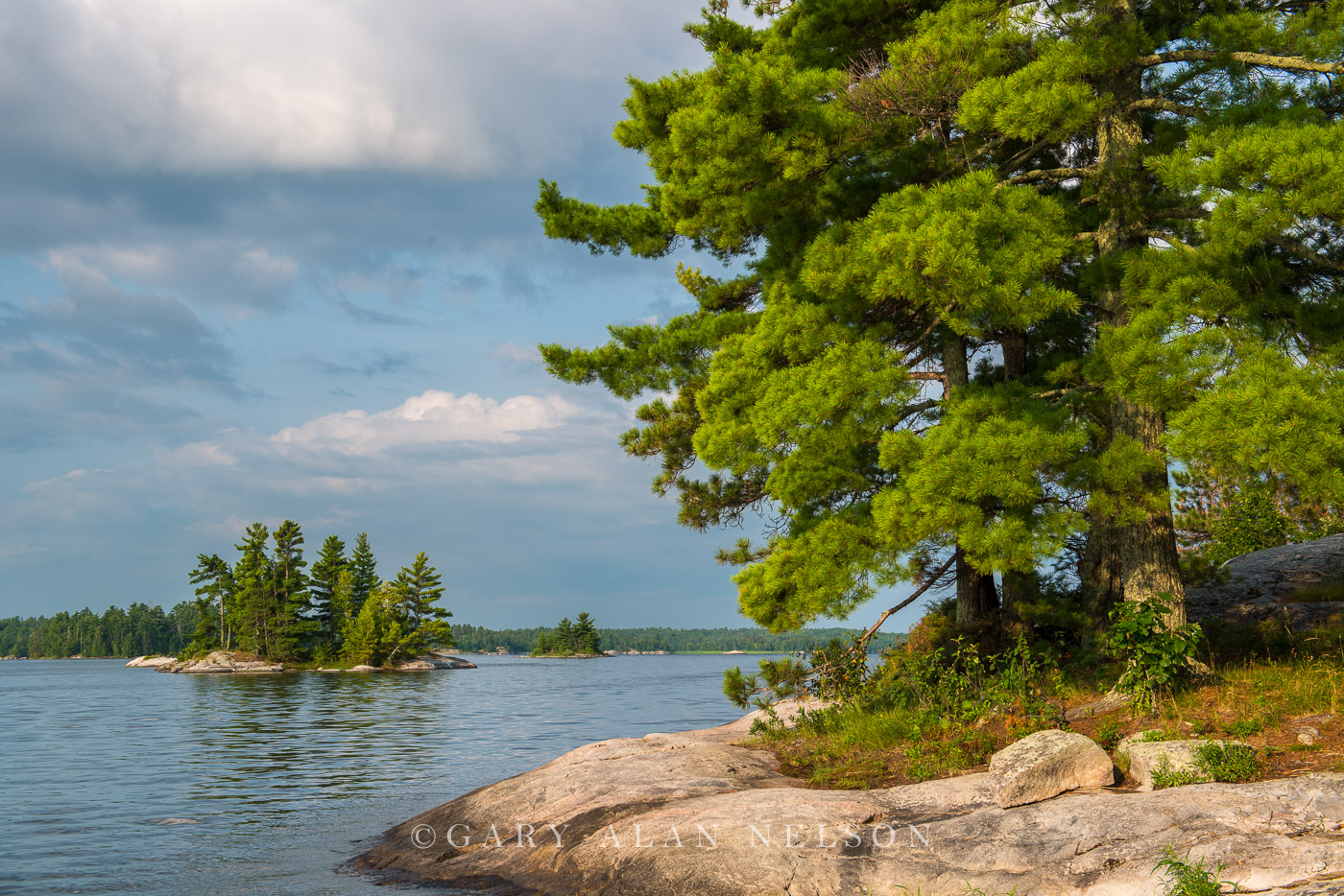 minnesota, voyageurs national park, islands, white pines, photo