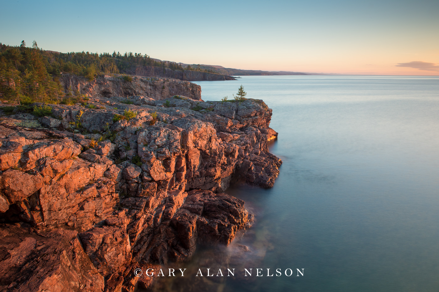 minnesota, lake superior, lone tree, photo