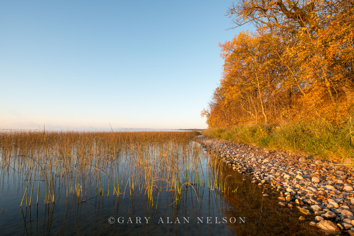 Morning light along the shore of Lake Mary, Douglas County, Minnesota
