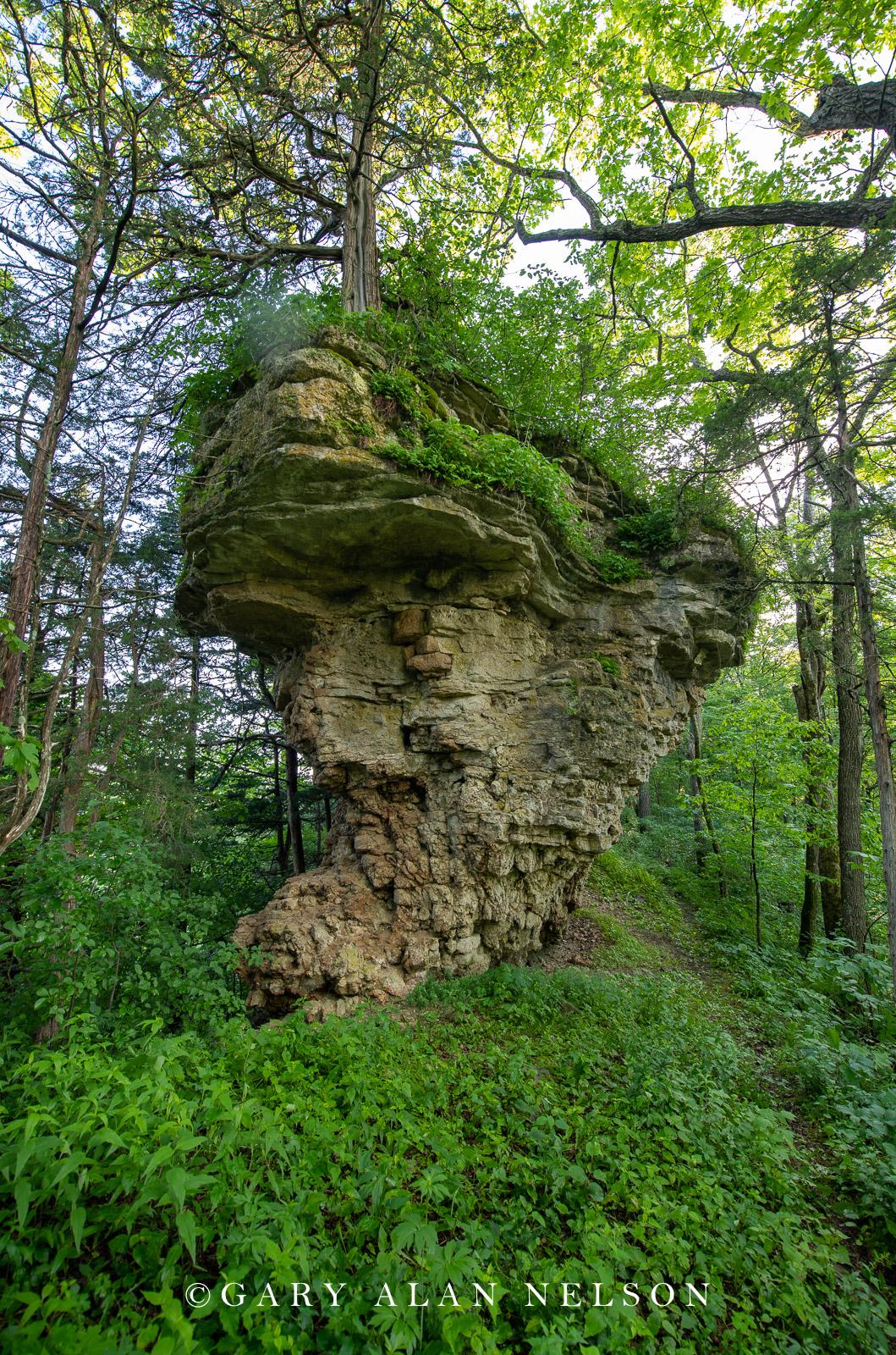 Cabbage Rocks, Richard J. Dorer Memorial Hardwood State Forest, Minnesota