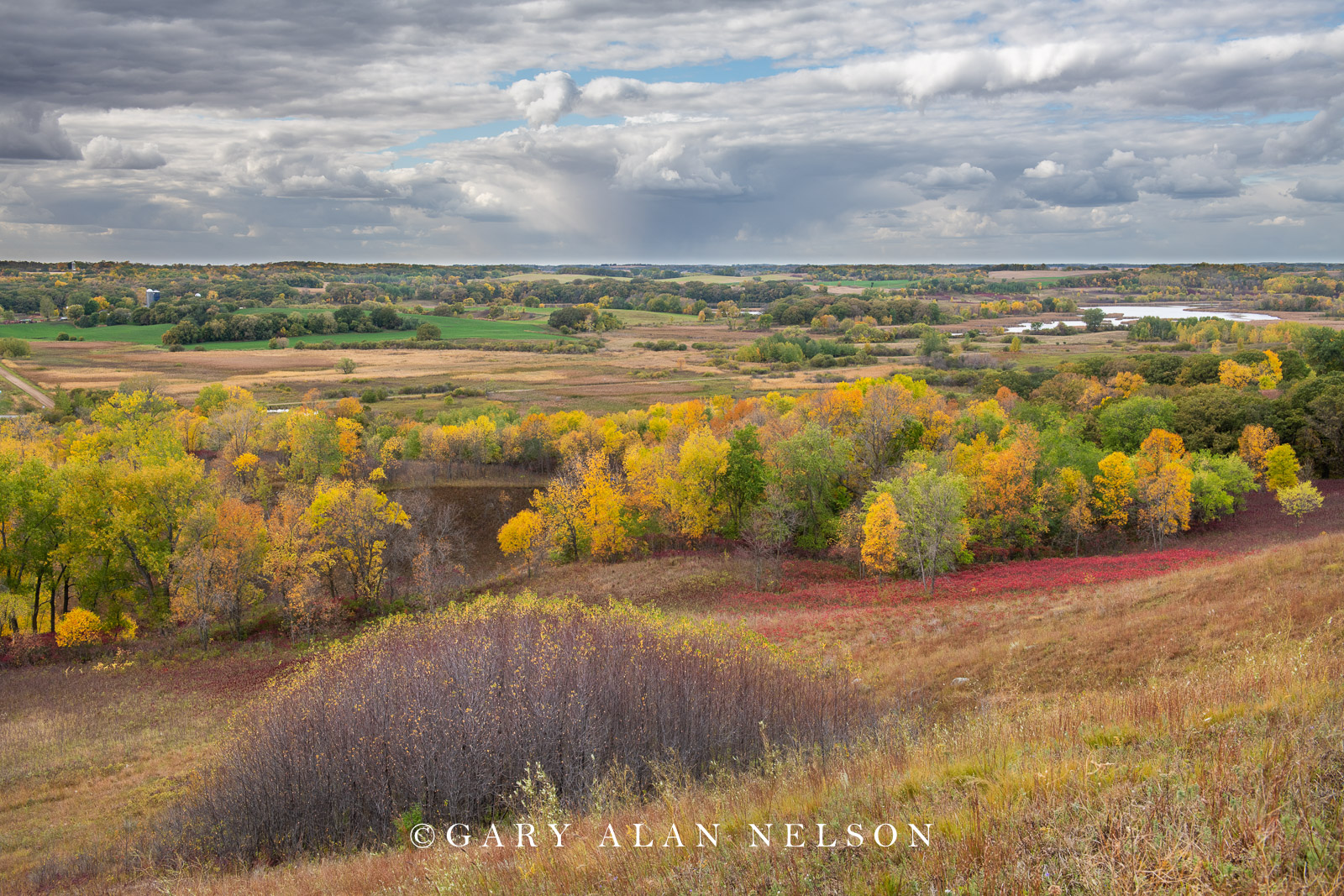 Rolling glacial landscape from the Nature Conservancy's Seven Sisters prairie, Ottertail COunty, Minnesota