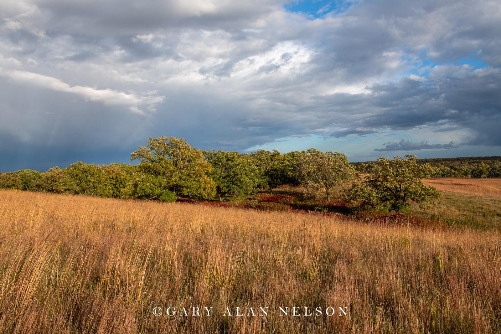 Clouds over prairie and oak savannah, Glendalough State Park, Minnesota