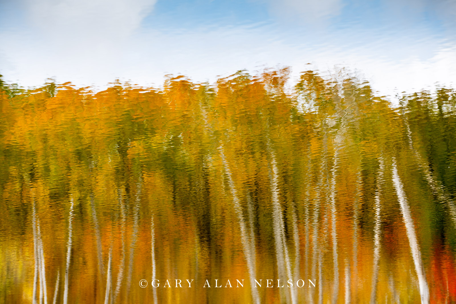 Autumn reflections on pond, Maplewood State Park, Minnesota