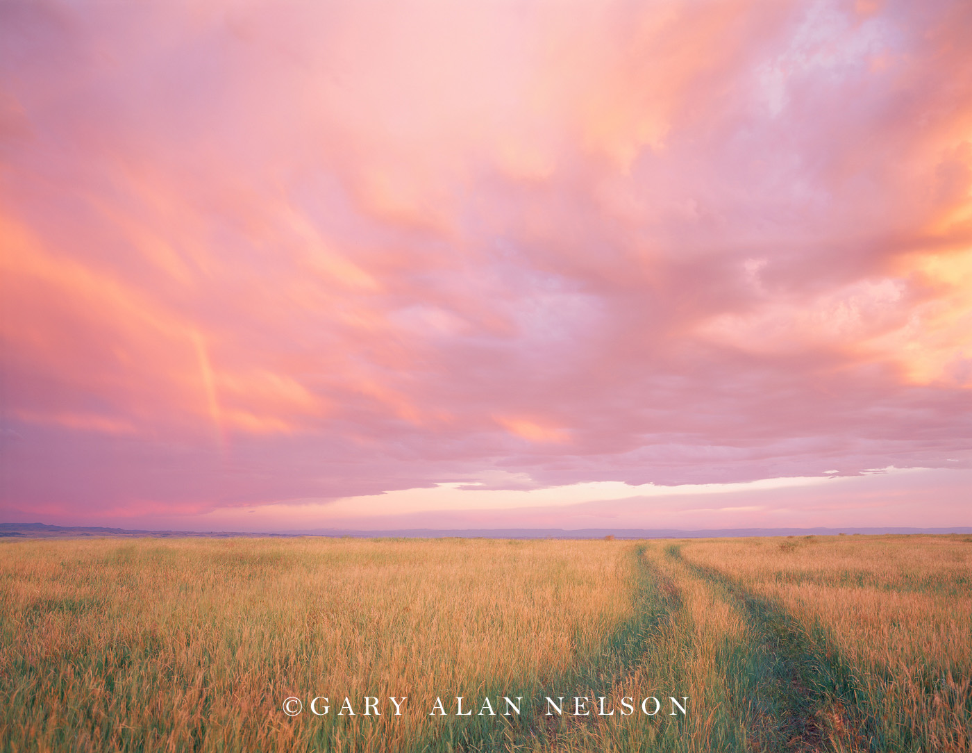 Bighorn County, Montana, trail, pink sky, photo