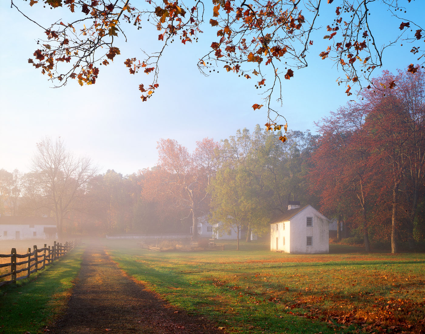 Fog rising over country road leading into Hopewell Furnace National Historic Site, Pennsylvania