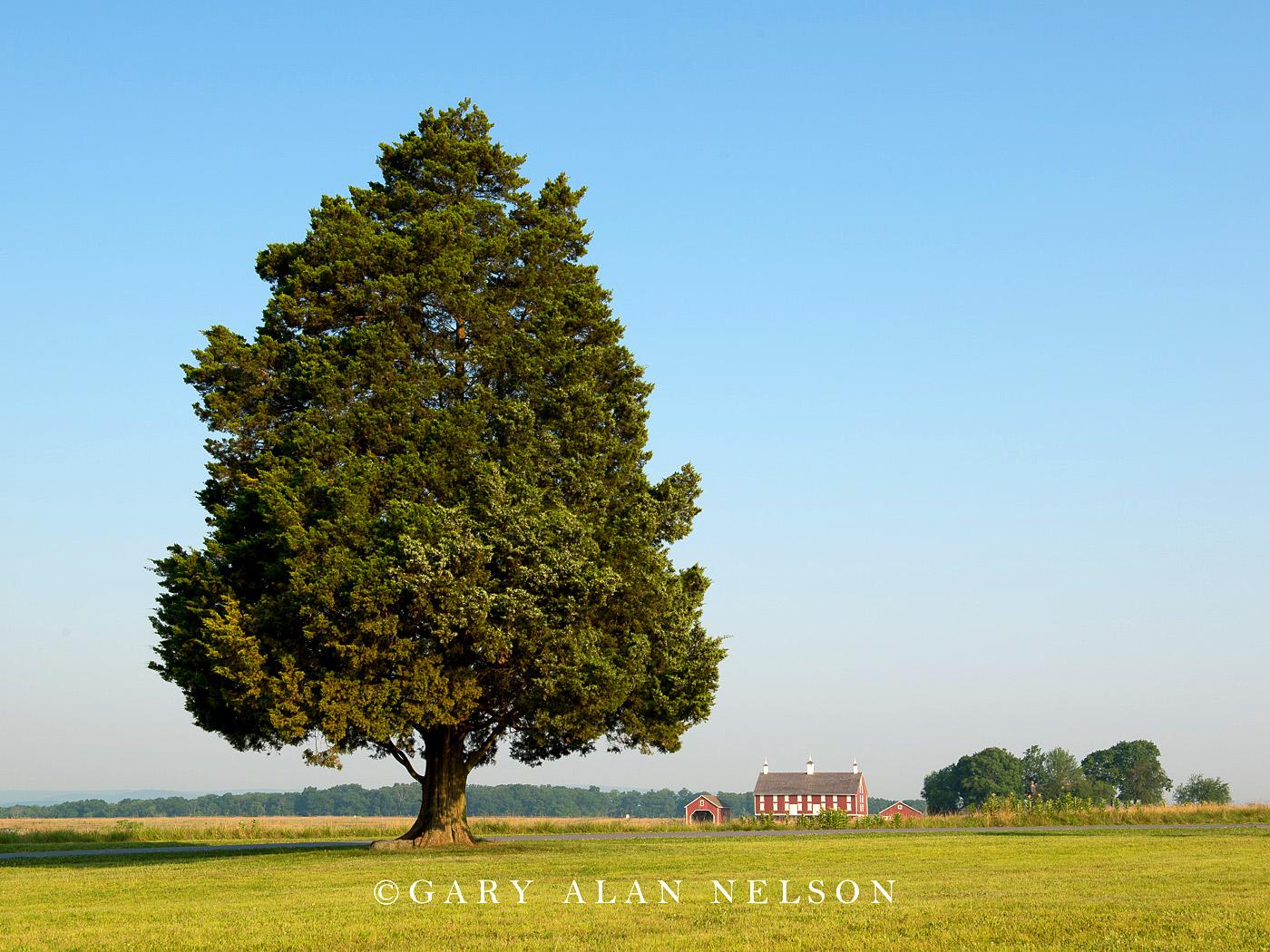 barn, gettysburg, civil war, photo