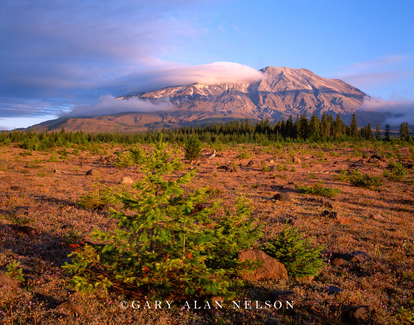 Mt. St. Helens National Monument, Washington, photo