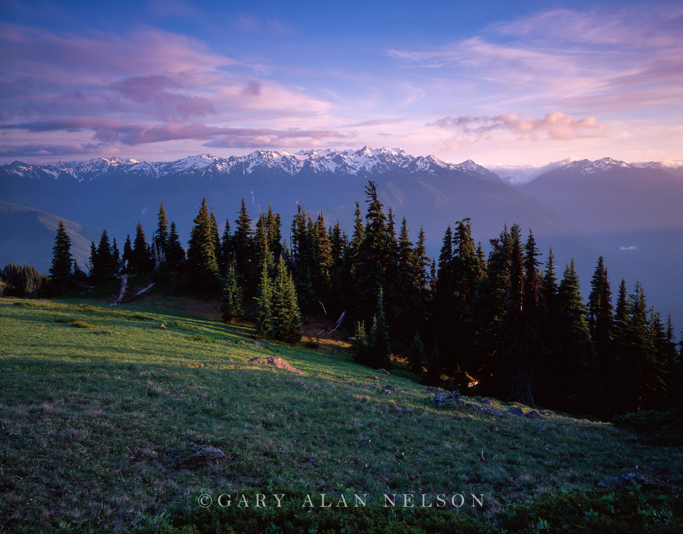Olympic National Park, Washington, mountain, hurricane ridge, photo