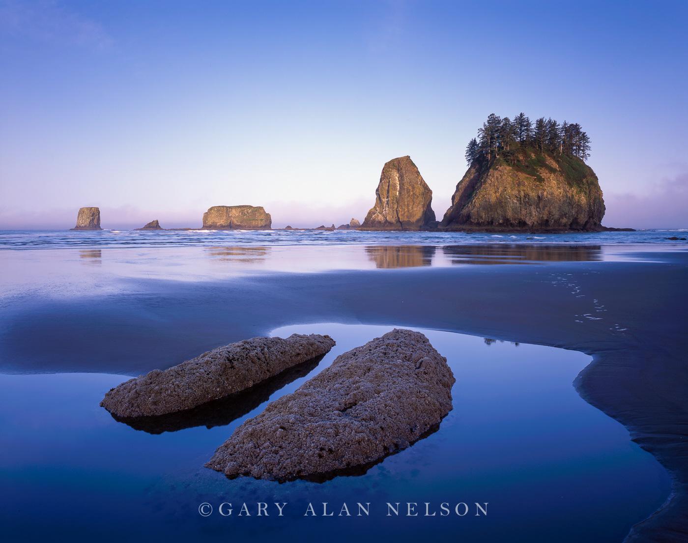 WA-98-5-NP Tide pools and seastacks on the Pacifi Ocean, Olympic National Park, Washington