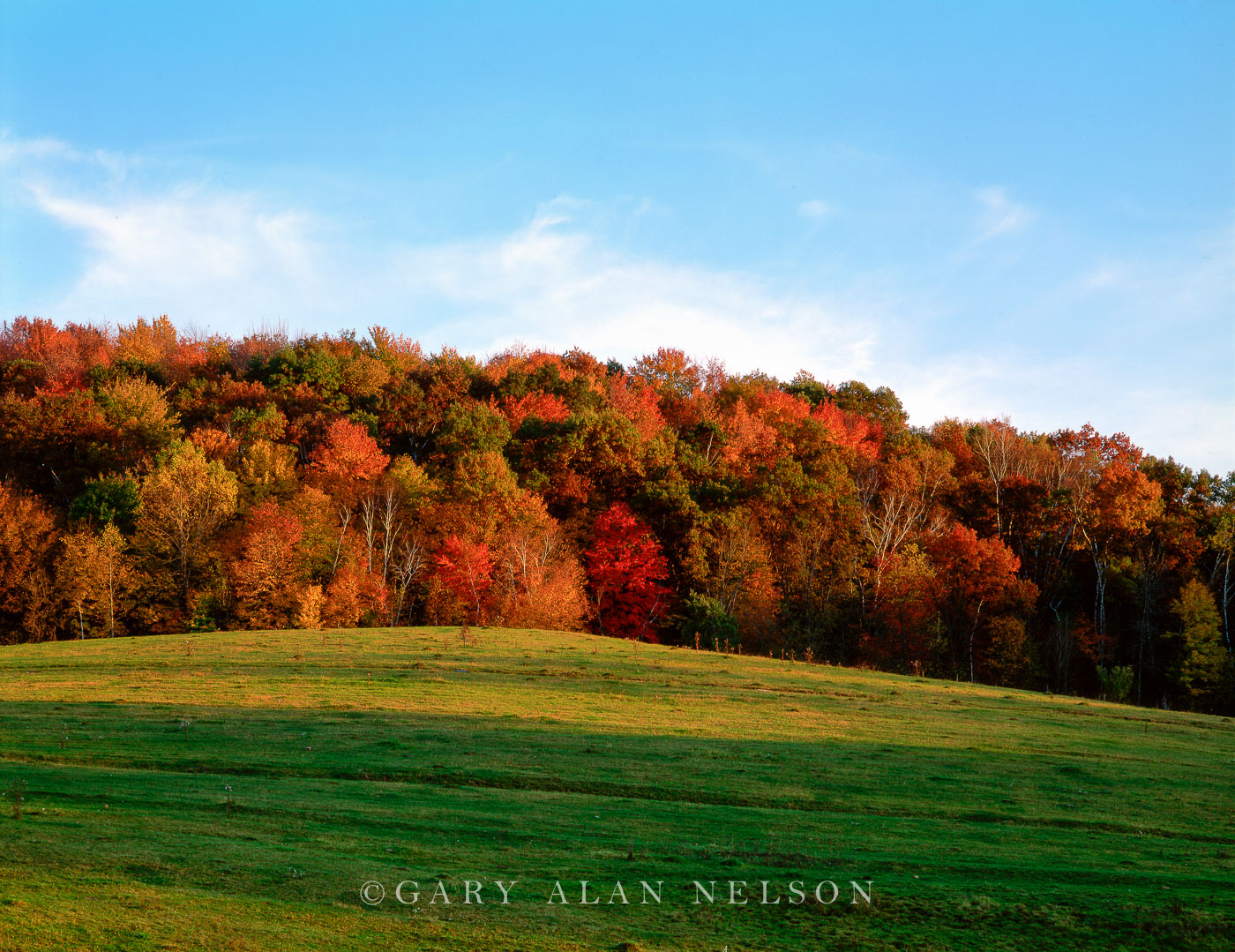 The Driftless Area, Vernon County, Wisconsin, autumn, photo